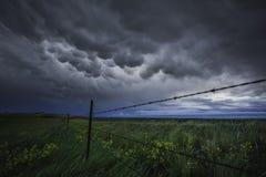 Viste della prateria e cieli stupefacenti Fotografia Stock