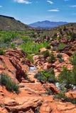 Viste delle cascate alle cadute del bacino idrico del parco di stato del Gunlock, in Gunlock, l'Utah da St George Primavera colat immagine stock