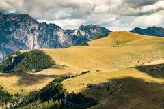 Viste delle dolomia, alpi italiane Fotografia Stock