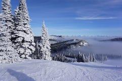 Viste di cielo degli sciatori: Giorno dell'uccellino azzurro della località di soggiorno di montagna del coregone fotografie stock libere da diritti