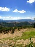 Viste di mattina dalla Toscana fotografie stock libere da diritti