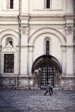 Viste di Mosca Fotografie Stock