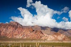 Viste di paesaggio vicino a RN7, Patagonia, Argentina Fotografia Stock Libera da Diritti