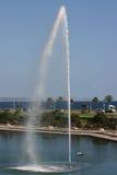 Viste di Palma del lago Immagine Stock