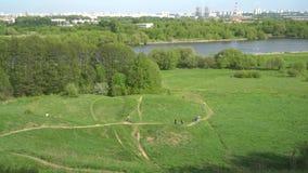 Viste panoramiche del fiume da un'alta collina archivi video