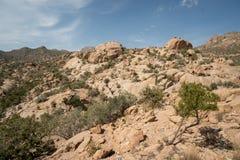 Viste sceniche sopra le montagne e le valli nella regione di Taif di Arabia Saudita immagine stock