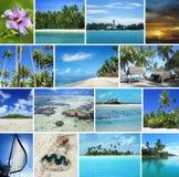 Viste sul mare tropicali Immagine Stock Libera da Diritti