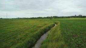 Vistula River Polen stock video