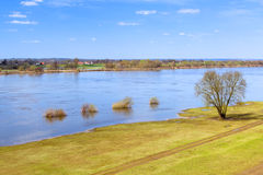Vistula river scenery with single tree Royalty Free Stock Photography
