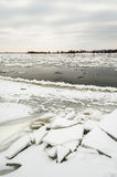 Vistula river in wintertime near kwidzyn on the north of poland Stock Images