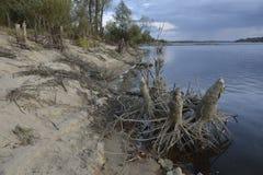 Vistula rzeka Zdjęcia Royalty Free