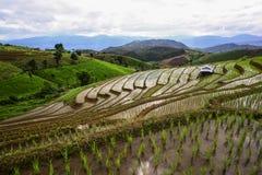 Visual arts rice terraces Royalty Free Stock Photography