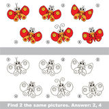 Visual game. Find hidden couple of Butterflies. The design difference. Vector visual game for children. Task and answer. Find two similar Butterflies Stock Photography