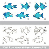 Visual game. Find hidden couple of Fishes. Royalty Free Stock Photography