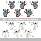 Visual game. Find hidden couple of Koalas. The design difference.  Vector visual game for children. Task and answer. Find two similar Koalas Stock Photography
