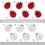 Visual game. Find hidden couple of Ladybugs. The design difference. Vector visual game for kid education. Simple level of difficulty. Easy educational game Stock Image