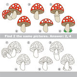 Visual game. Find hidden couple of Toadstools. Royalty Free Stock Photo