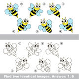 Visual game. Find hidden couple of Wasps. Royalty Free Stock Photos