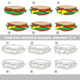 Visual game. Find hidden pair of objects. Stock Images