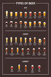 A visual guide to the types of beer. Various types of beer in recommended glasses. Vector illustration Royalty Free Stock Photos