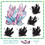 Visual puzzle - Find the right shade to the picture Royalty Free Stock Image