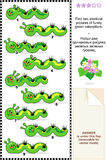 Visual puzzle - find two identical images of caterpillars Royalty Free Stock Images