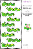 Visual puzzle - find two identical images of caterpillars Stock Image