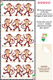Visual puzzle - monkeys - spot mirror images Stock Image
