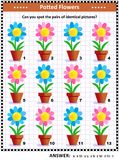 Visual puzzle with potted flowers Stock Photo