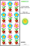 Visual riddle with potted flowers Royalty Free Stock Images