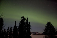 Visualización de Borealis de la aurora (luces norteñas) Fotografía de archivo libre de regalías