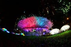 Visualización de la flor del LED en el suelo Fotografía de archivo libre de regalías