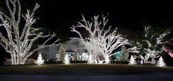 Visualización de la luz de la Navidad Fotografía de archivo libre de regalías