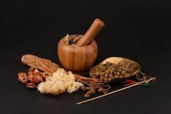 Visualización de la medicina china Foto de archivo libre de regalías
