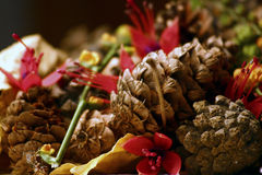 Visualización de la mezcla del otoño foto de archivo libre de regalías