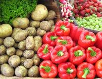 Visualización de las verduras frescas Imagen de archivo libre de regalías