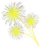 Visualización de los fuegos artificiales Imagenes de archivo