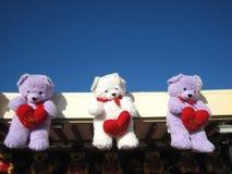 Visualización de los osos del peluche Fotos de archivo libres de regalías