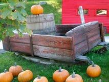 Visualización del otoño Fotografía de archivo