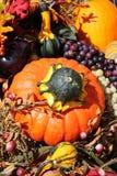 Visualización del otoño Foto de archivo libre de regalías