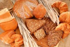 Visualización variada del pan Imagen de archivo libre de regalías