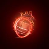 Visualização do coração humano feito das linhas de néon Imagem de Stock Royalty Free
