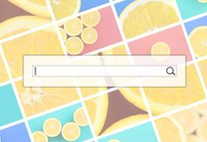 Visualization of the search bar on the background of a collage o. F many pictures with juicy oranges. Set of images with fruits on backgrounds of different royalty free illustration