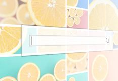 Visualization of the search bar on the background of a collage o. F many pictures with juicy oranges. Set of images with fruits on backgrounds of different vector illustration