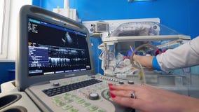 Visualizzatore del computer durante la procedura dell'ultrasuono dell'infante archivi video
