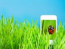 visualizzazione 3d sul telefono cellulare Fotografia Stock