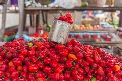 Visualizzazione dei peperoncini rossi Immagine Stock