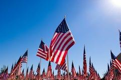 Visualizzazione della bandiera americana in onore del giorno di veterani Fotografia Stock Libera da Diritti