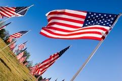 Visualizzazione della bandiera americana in onore del giorno di veterani Fotografia Stock