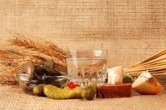 Visualizzazione della bevanda della vodka Fotografia Stock